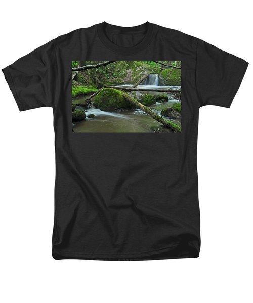 Dual Falls Men's T-Shirt  (Regular Fit) by Glenn Gordon