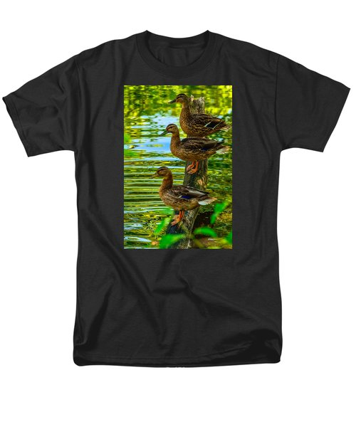 Ducks On A Log 3 Men's T-Shirt  (Regular Fit) by Brian Stevens