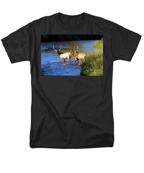 Elk Men's T-Shirt  (Regular Fit) by Cindy Murphy - NightVisions