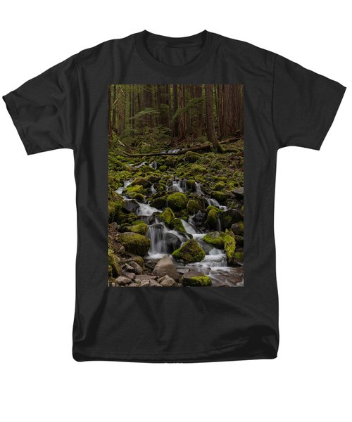 Forest Cathederal Men's T-Shirt  (Regular Fit) by Mike Reid