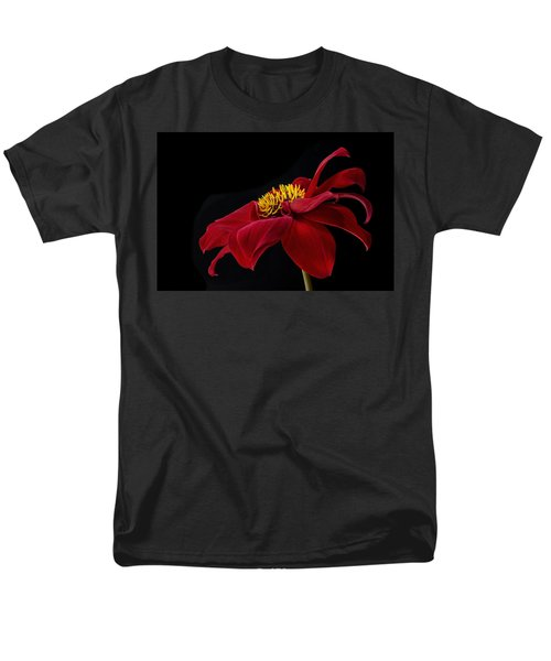 Graceful Red Men's T-Shirt  (Regular Fit) by Roman Kurywczak