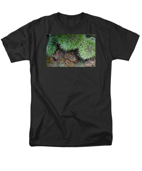 Green And Strawberry Anemonies Men's T-Shirt  (Regular Fit) by Chuck Flewelling
