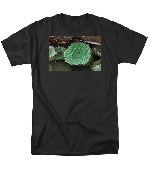 Green Anemone Men's T-Shirt  (Regular Fit) by Chuck Flewelling