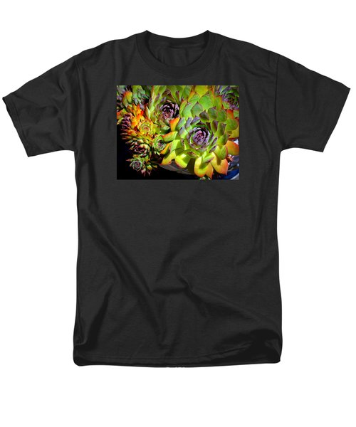 Hens 'n Chicks Men's T-Shirt  (Regular Fit) by Lori Seaman