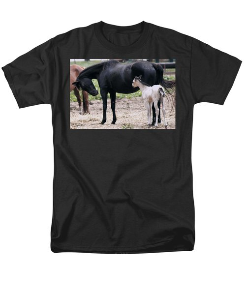 Horse And Colt Men's T-Shirt  (Regular Fit) by Debra Crank