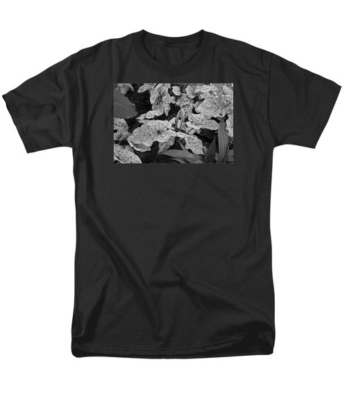 Hosta Bw - Pla363 Men's T-Shirt  (Regular Fit) by G L Sarti