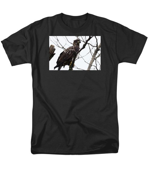 Men's T-Shirt  (Regular Fit) featuring the photograph Juvenile Eagle 2 by Steven Clipperton