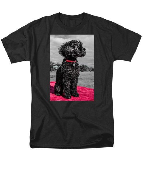 Layla Men's T-Shirt  (Regular Fit) by Martina Fagan