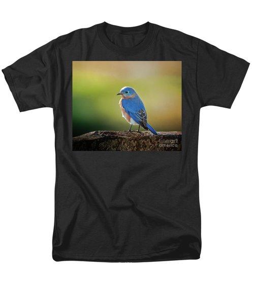Lenore's Bluebird Men's T-Shirt  (Regular Fit) by Robert Frederick