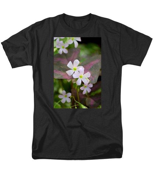 Little Twinkles Men's T-Shirt  (Regular Fit) by Deborah  Crew-Johnson