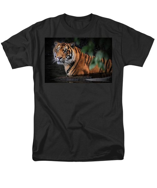 Looking Oh So Sweet Men's T-Shirt  (Regular Fit)