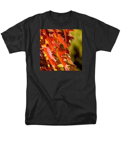 October Oak Leaves Men's T-Shirt  (Regular Fit)