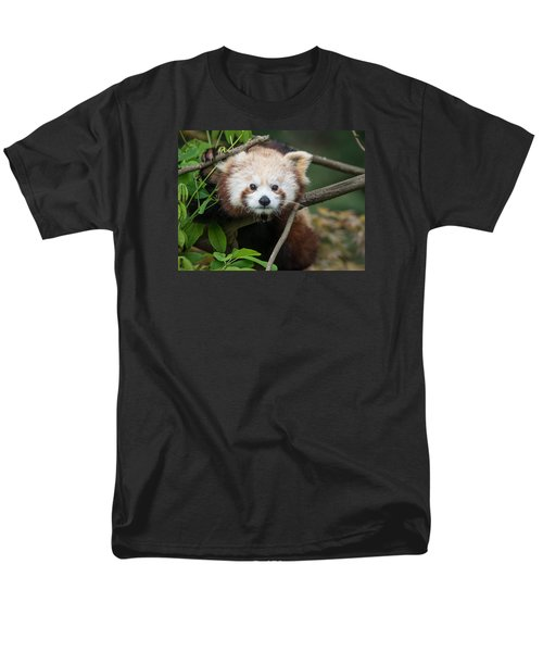 One Intense Critter Men's T-Shirt  (Regular Fit) by Greg Nyquist