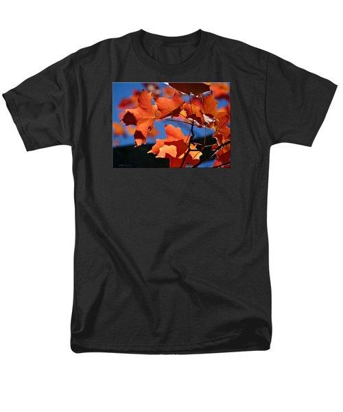 Orange Leaves Men's T-Shirt  (Regular Fit)