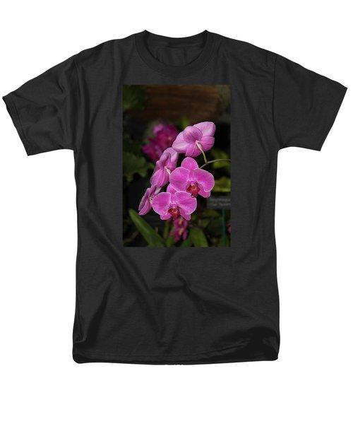 Orchids Alicia Men's T-Shirt  (Regular Fit)