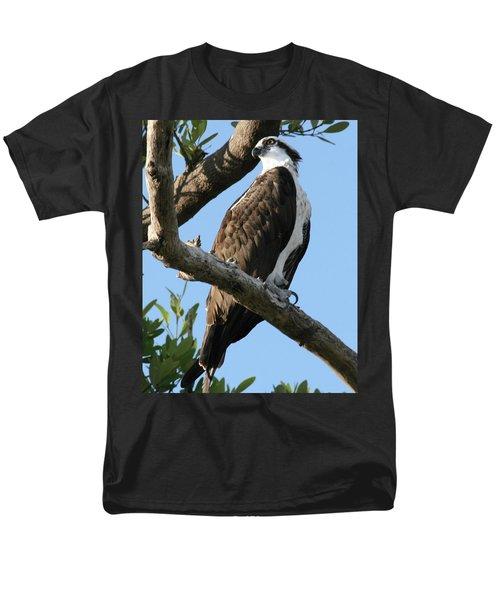 Osprey - Perched Men's T-Shirt  (Regular Fit) by Jerry Battle