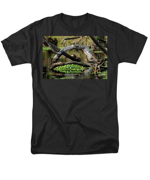 Painted Turtles Men's T-Shirt  (Regular Fit) by Paul Mashburn