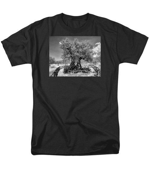 Patriarch Olive Tree Men's T-Shirt  (Regular Fit) by Alan Toepfer