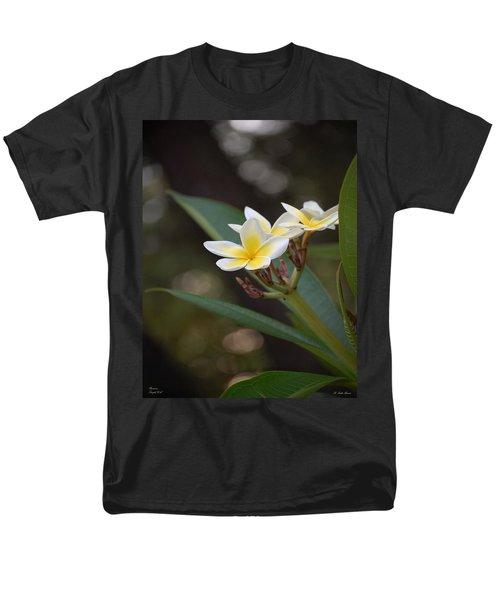 Plumeria II Men's T-Shirt  (Regular Fit) by Robert Meanor