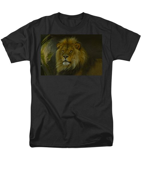 Pride Land Men's T-Shirt  (Regular Fit) by Laddie Halupa