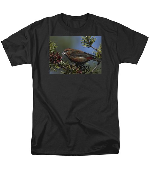 Red Crossbill Feeds On Pine Cone Seeds Men's T-Shirt  (Regular Fit) by Mark Wallner