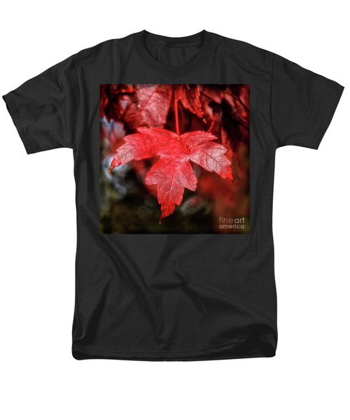 Red Leaf Men's T-Shirt  (Regular Fit) by Robert Bales