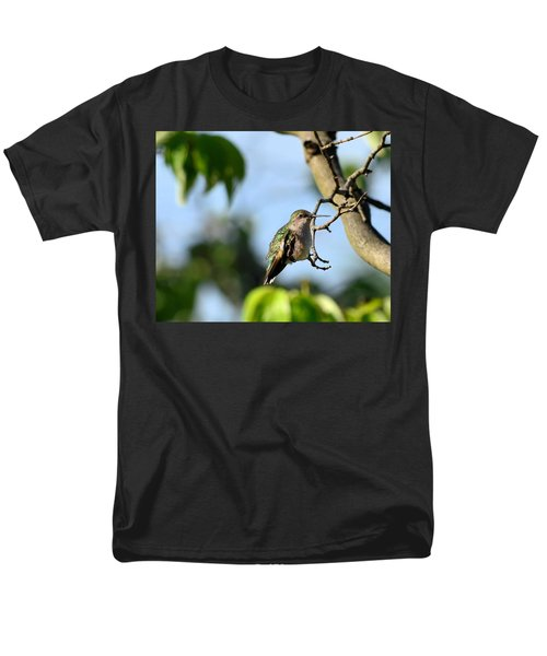 Resting Hummingbird Men's T-Shirt  (Regular Fit) by Kathy Eickenberg