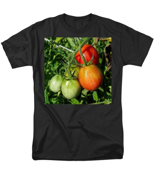 ripening #photography #garden Men's T-Shirt  (Regular Fit) by Andrew Pacheco