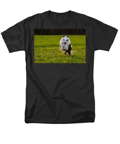 Running Australian Shepherd Men's T-Shirt  (Regular Fit) by Daniel Precht