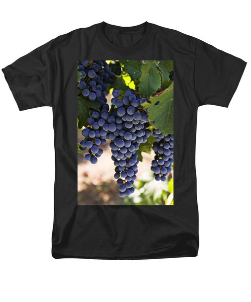 Sauvignon Grapes Men's T-Shirt  (Regular Fit) by Garry Gay