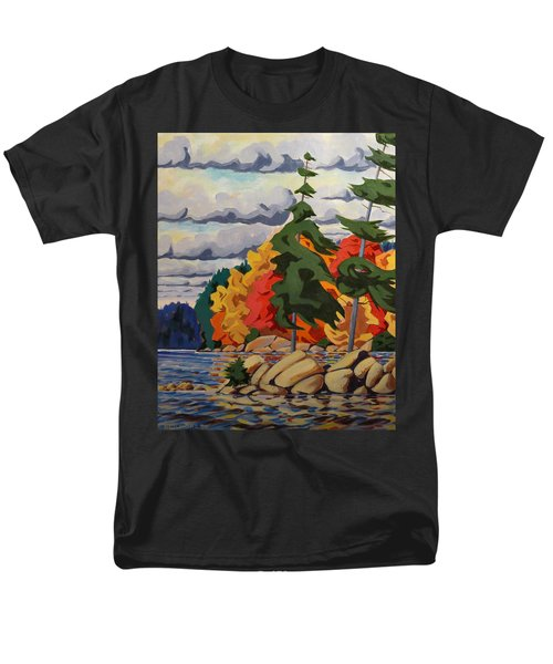 Snake Island In Fall-close Men's T-Shirt  (Regular Fit) by David Gilmore