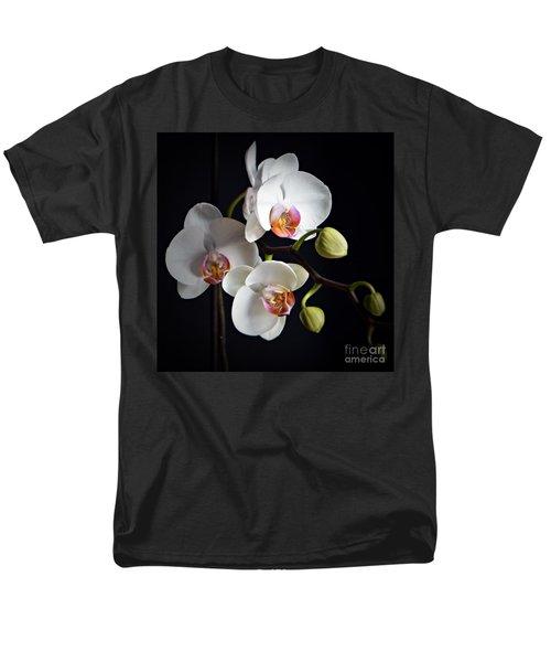 Softly Men's T-Shirt  (Regular Fit)