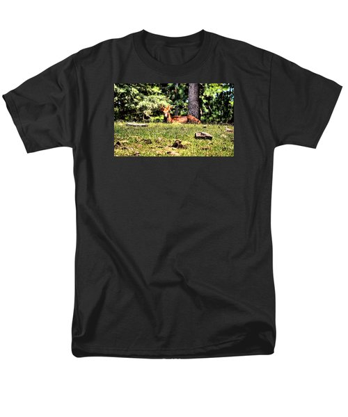 Stag In The Woods Men's T-Shirt  (Regular Fit) by James Potts