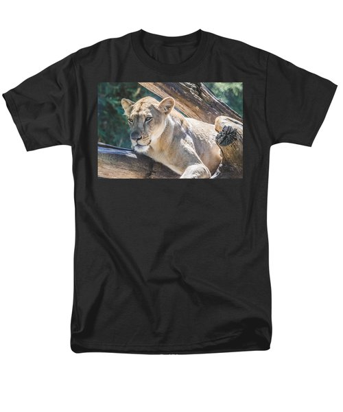 The Lioness Men's T-Shirt  (Regular Fit) by David Collins