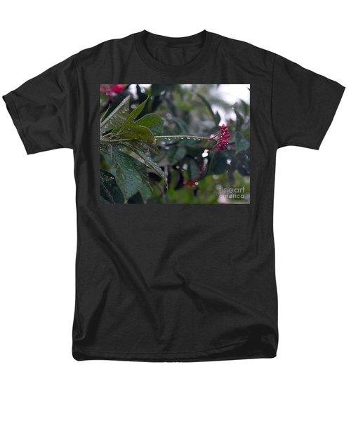 The Morning Kiss Men's T-Shirt  (Regular Fit)