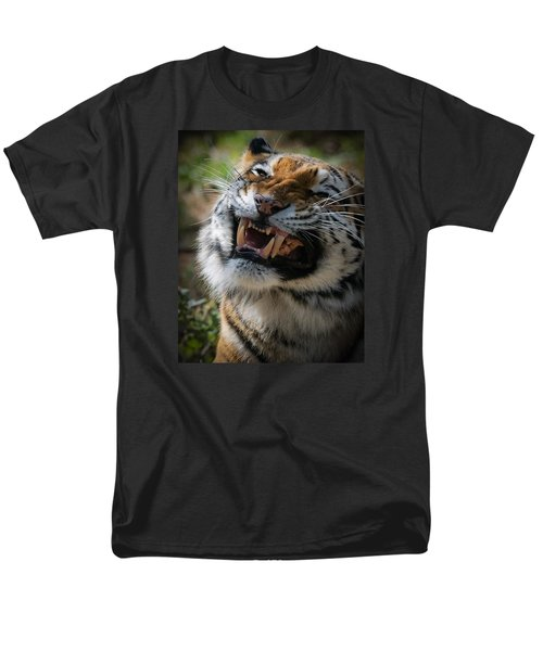 Tiger Faces 5 Men's T-Shirt  (Regular Fit)