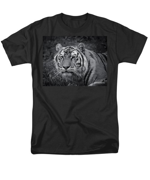 Tiger In The Grass Men's T-Shirt  (Regular Fit) by Darcy Michaelchuk