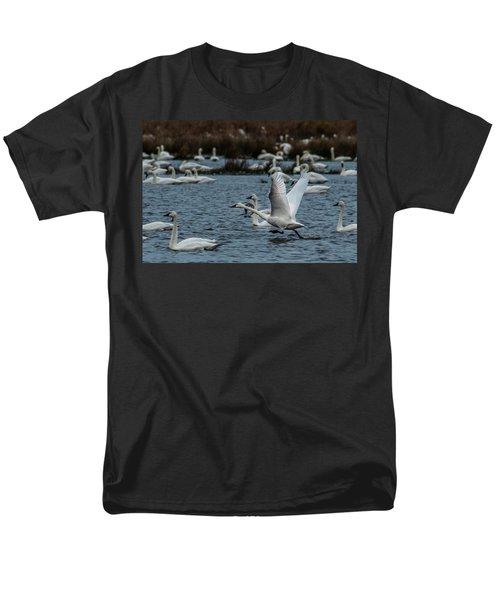 Tundra Swan And Liftoff Head Start Men's T-Shirt  (Regular Fit)