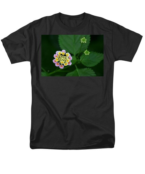 Men's T-Shirt  (Regular Fit) featuring the photograph Waiting Their Turn by Shari Jardina