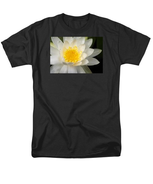 Water Lily II Men's T-Shirt  (Regular Fit)