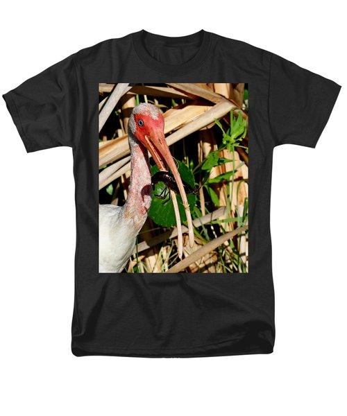 White Ibis Eating Crayfish Men's T-Shirt  (Regular Fit)