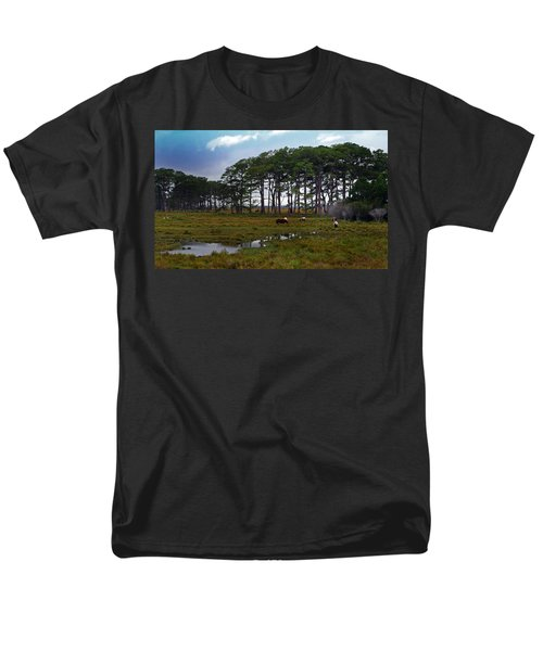 Wild Ponies Of Assateague Men's T-Shirt  (Regular Fit)