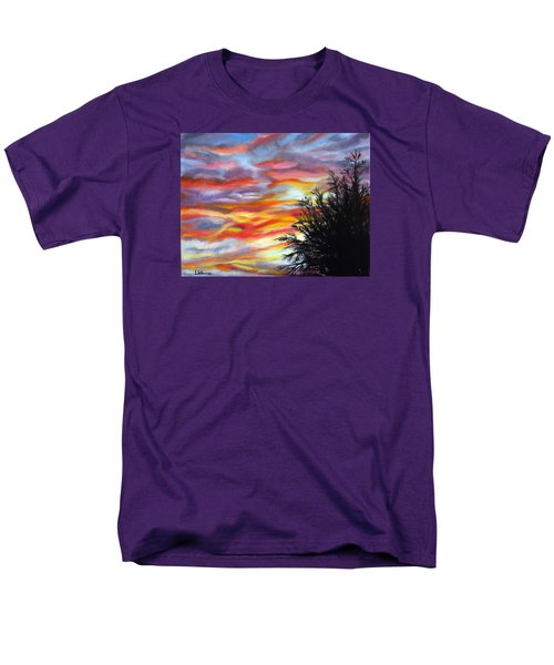 After The Storm Men's T-Shirt  (Regular Fit) by LaVonne Hand