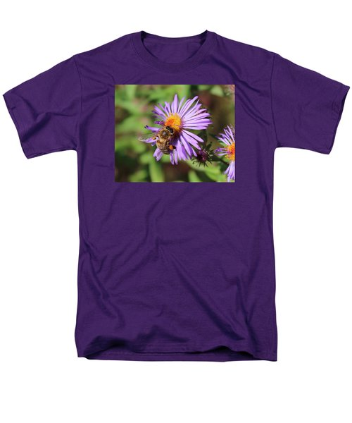 Honeybee On Purple Wild Aster Men's T-Shirt  (Regular Fit) by Lucinda VanVleck