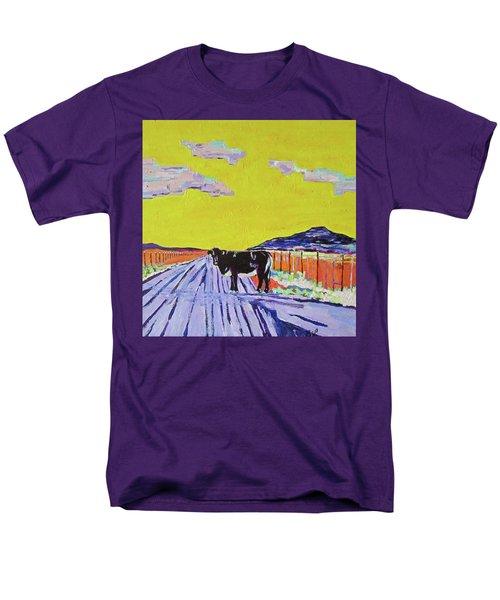 Backroads Abiquiu, New Mexico Men's T-Shirt  (Regular Fit) by Brenda Pressnall