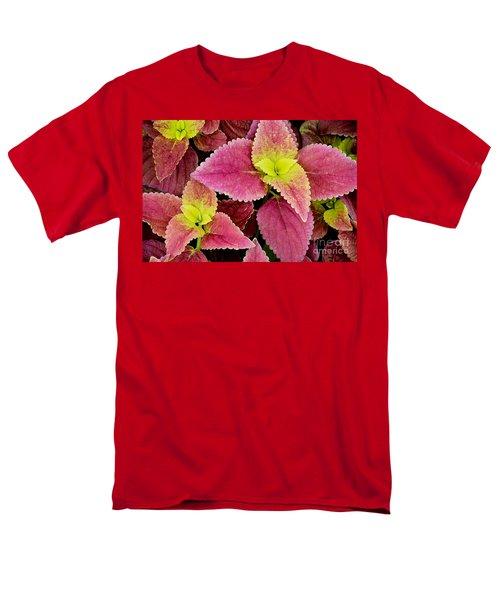 Coleus Colorfulius Men's T-Shirt  (Regular Fit) by David Lawson