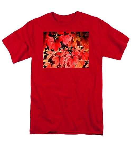 Crimson Virginia Creeper 2 Men's T-Shirt  (Regular Fit) by Danielle  Parent