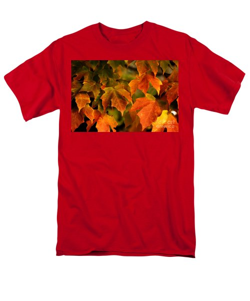Fall Color Men's T-Shirt  (Regular Fit)