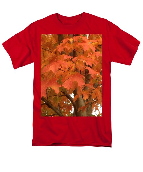 Maple Orange Men's T-Shirt  (Regular Fit) by Pema Hou