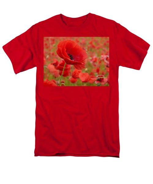 Red Poppies 3 Men's T-Shirt  (Regular Fit) by Jouko Lehto